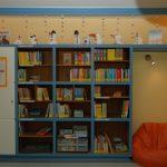 Bücherregal2008